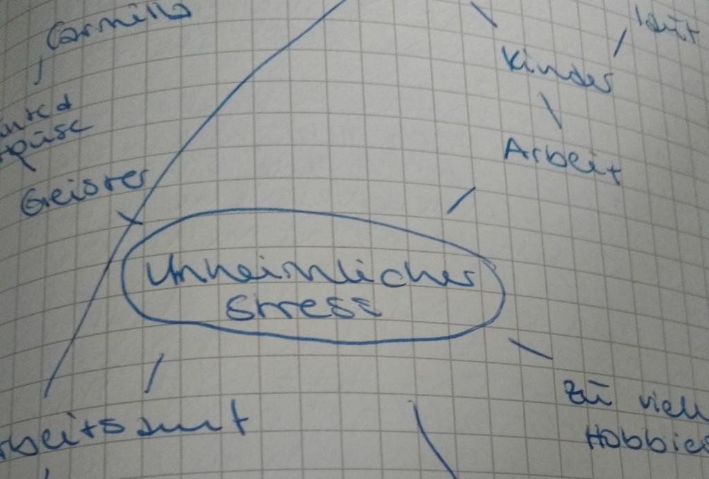 """Cluster zum Thema """"Unheimlicher Stress"""""""